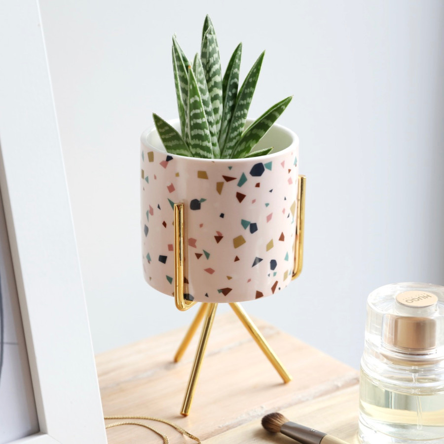 11 new must-have buys from Next Home